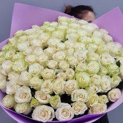«101 белая метровая роза»
