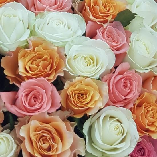 «51 роза микс»