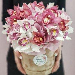 «Королевская орхидея»